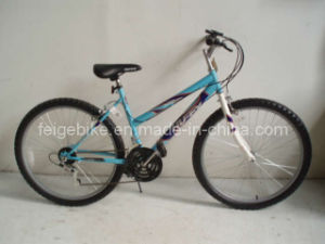 Bicycle (CB-028) pictures & photos
