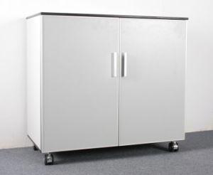 Filing Storage Cabinet (DEBO10091401)