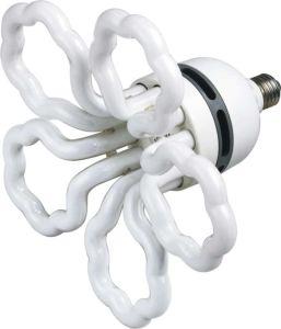 Energy Saving Lamp (ESL013)
