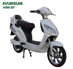 Electric Bike (HSM-307)