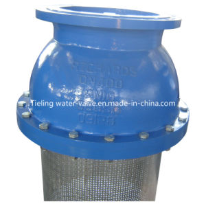 Cast Iron and Ductile Iron Foot Valve