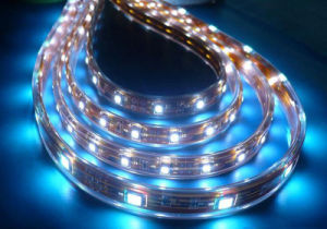 Waterproof IP65 60LEDs SMD5050 Cuttable Rope LED Flexible Strip Light pictures & photos