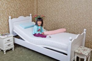 Home Furniture Adjustable Bed pictures & photos
