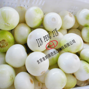 2014 Fresh Onion (3-5cm, 5-7cm, 7-9cm, 8-11 cm and so on)