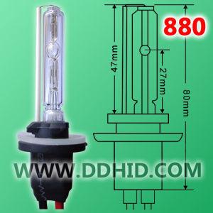 Auto HID Xenon Light 880