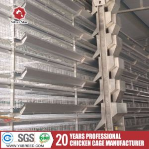 New Design Factory Price H Type 6 Tiers Battery Layer Cages pictures & photos