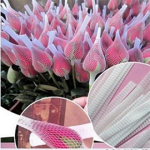 Protective Mesh Net for Rose Supplier