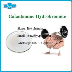 Nootropics Powder Galantamine Hydrobromide CAS 1953-04-4