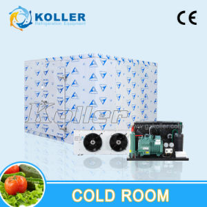 Space-Saving Containerized Cold Room for Ice Storing pictures & photos