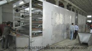 Dw Series Mesh Belt Dryer pictures & photos