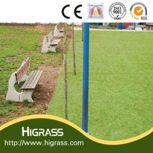 Natural Beautiful Garden Artificial Lawn pictures & photos
