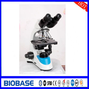 Microscope Laboratory Biological Microscope Xs Series pictures & photos