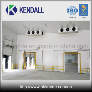 Low Temperature Cold Storage Room with Bitzer Condensing Unit pictures & photos