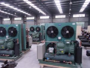 Bizter Compressor/Bizter Condensing Unit for Cold Room pictures & photos