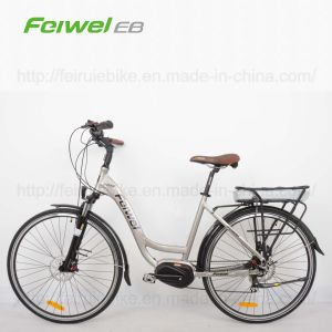 "28"" Middle-Drive Motor Electric Bicycle (TDB05Z) pictures & photos"