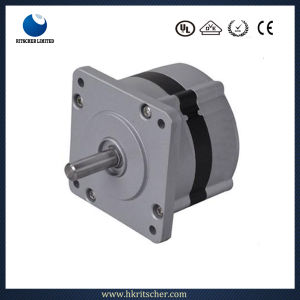 High Speed Brushless DC Plisse Spring System Motor pictures & photos