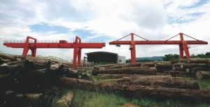 Mg Type Gantry Crane with Hook pictures & photos