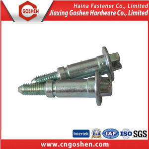Non- Standard/ Custom Screw Bolt as Drawing with High Quality pictures & photos