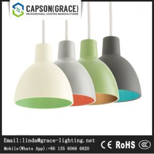 Decorative Aulumium Colorful Pendant Lamp Gd-5071-1 pictures & photos