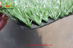 Synthetic Football Grass for Sport Field with SGS Certification pictures & photos