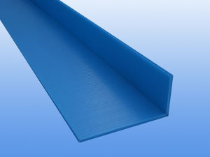PP Corrugated Sheet for Printing pictures & photos