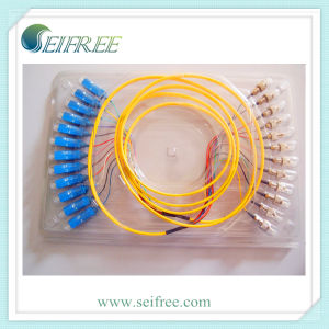 12 Cores Sc-FC Fiber Optical Patch Cord Cable pictures & photos