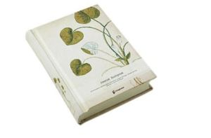 Bundling Book Machine/Strapping Machine HS-Ks600 pictures & photos