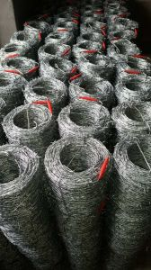 14gax14ga Hot Dipped Galvanized Barbed Wire pictures & photos
