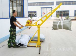 Construction Mini Crane 200kg 300kg 400kg pictures & photos