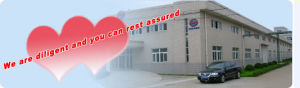Three or Four Side Sealing Bag Granule Packing Machine Xfl-K pictures & photos