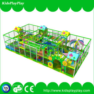 Endless Fun Inflatable Attractive Indoor Playground Equipment pictures & photos