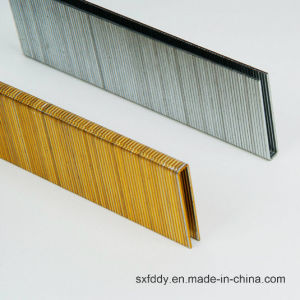 9040 / 440k Good Quality Staples in China pictures & photos