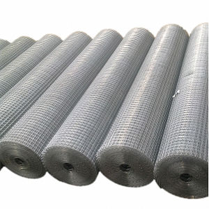 "China Manufacturer 1/4"" X 1/4"" Mesh Welded Wire Mesh pictures & photos"