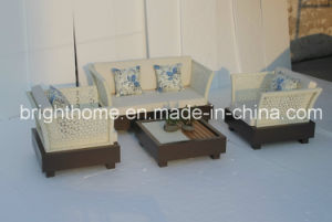 Easy for Cleaning Sofa Set/Wicker Outdoor Furniture (BP-8020) pictures & photos