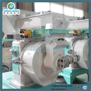 Wood and Rice Husk Pellet Making Machine pictures & photos