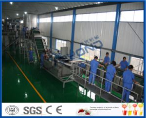 mango processing line pictures & photos