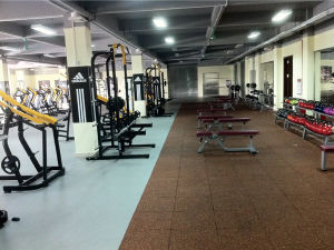 Body Building Equipment/Gym Equipment for Prone Glute (NHS-2002) pictures & photos