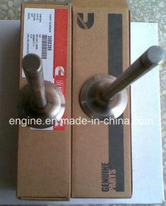 Cummins K19 Engine Inlet Valve and Outlet Valve 3052820 3088389