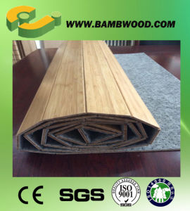 Cheap Professional Supplier Bamboo Carpet pictures & photos