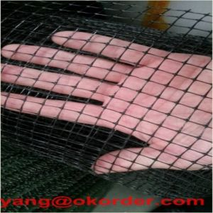 Plastic Mesh PP Material Deer Netting Fence pictures & photos