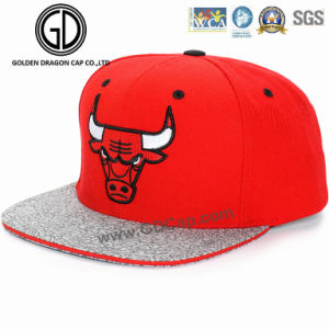 2016 Top Quality New Style Era Snapback Cap with Embroidery pictures & photos