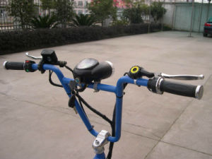 Promotion Pedal Pedicab Rickshaw (VS-T301) pictures & photos