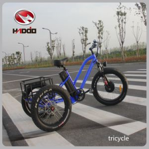 24′′ Aluminum Alloy Trike Fat Tire Electric Tricycle pictures & photos