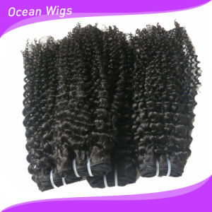 Quercy Natural Looking Direct Factory Wholesale Indian Kinky Curl Virgin Human Hair Extension (KW-072b) pictures & photos