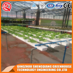 Agriculture Multi Span PC Sheet Green House with Hydroponics System pictures & photos
