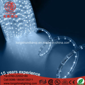 Waterproof LED 12V 100m/Roll LED Decoratiove Rope Strip Light pictures & photos