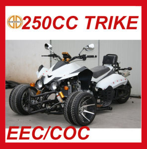 Chinese Wholesale 250cc 3 Wheel ATV pictures & photos
