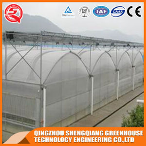 Agriculture Vegetable/ Flower PE Film Green House for Growing Plants pictures & photos