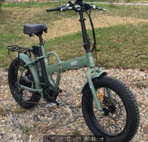 6061 Alu Frame Ebike 48V 750W Folding Electric Bike pictures & photos