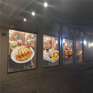 High Brightness/Beautiful/Shining P16 Indoor Transparent LED Display for Advertising pictures & photos